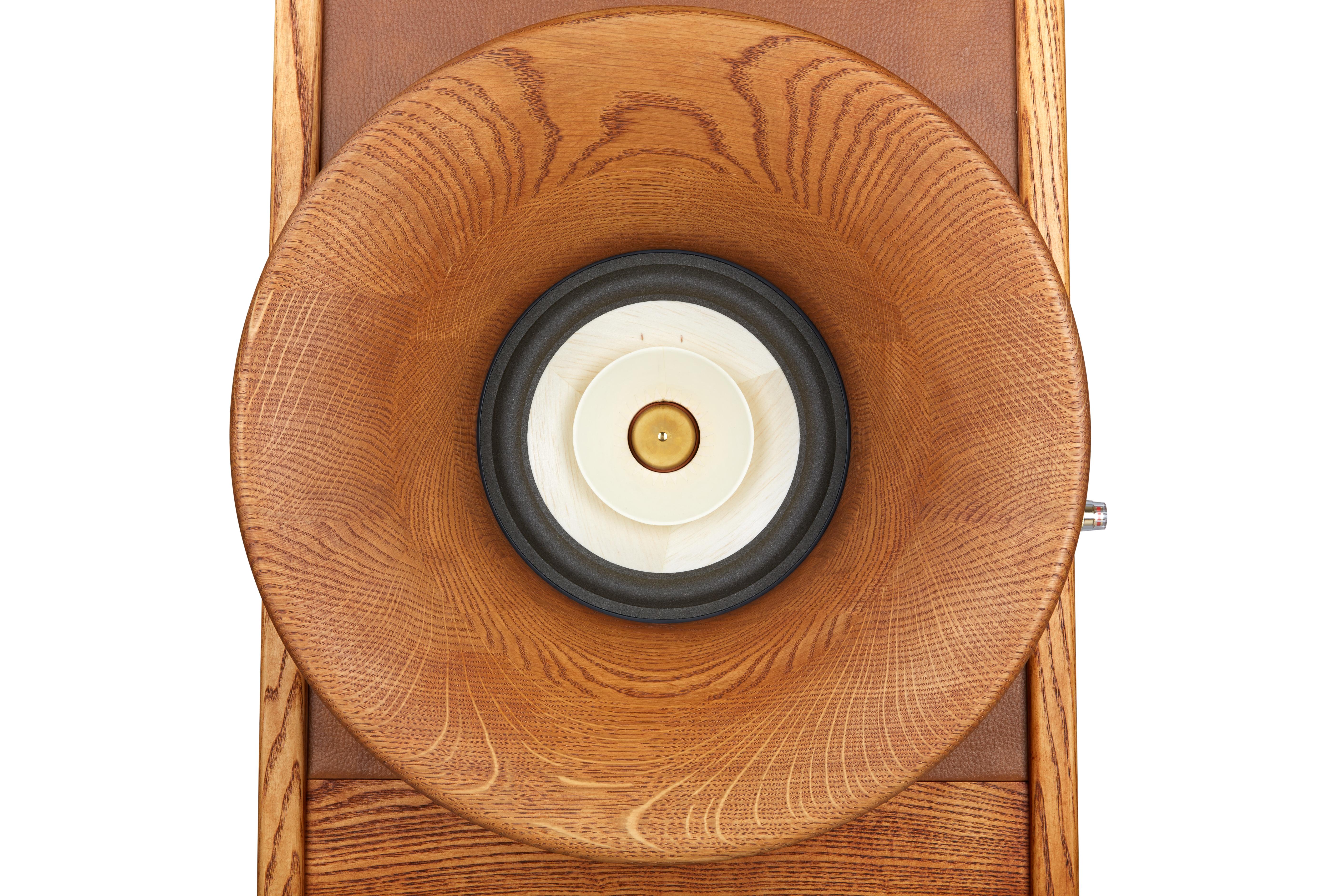 Evolution speakers: Front horn Oris 500