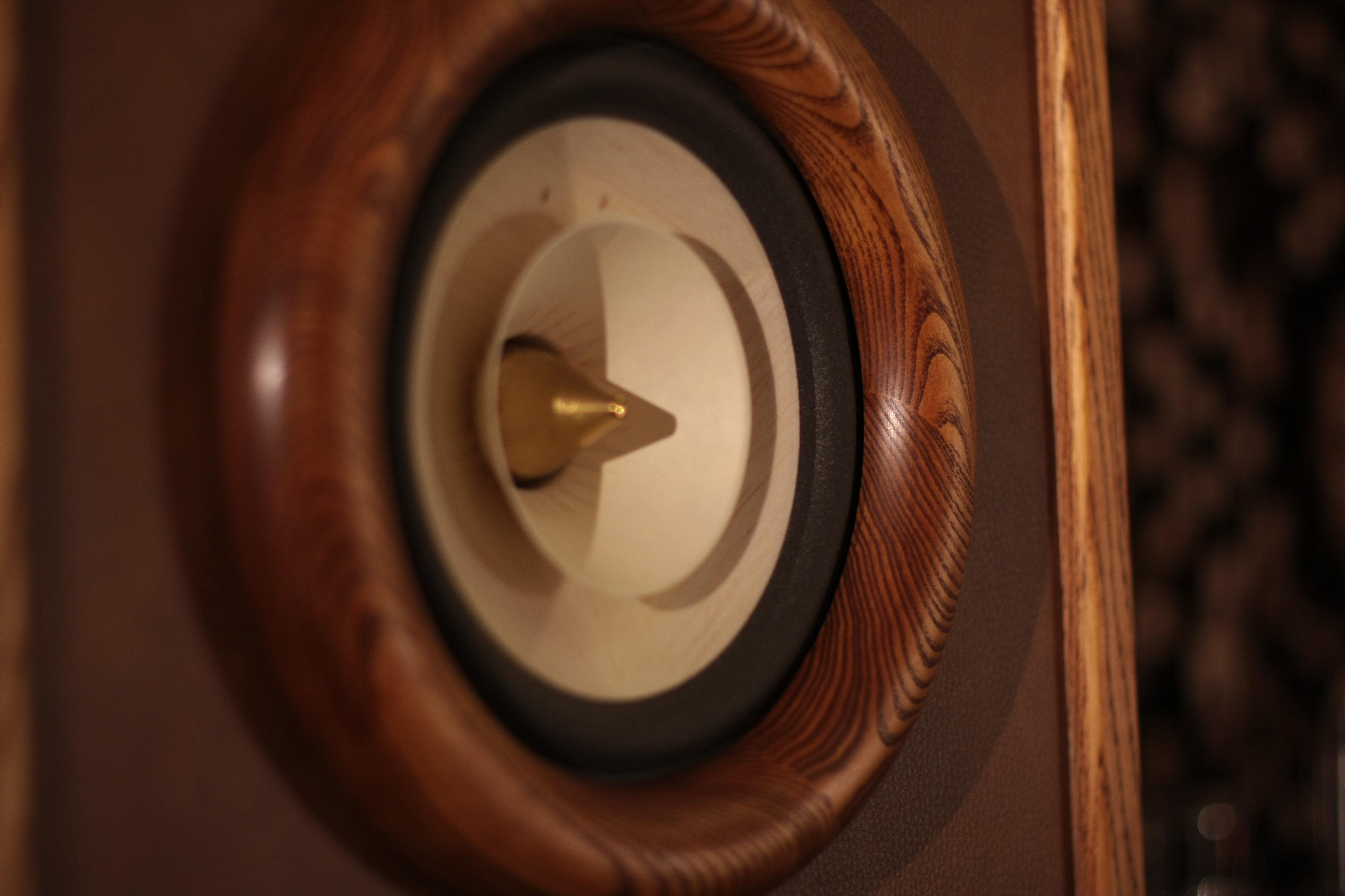 RDacoustic reproduktorové soustavy Evolution stereo 2.0, Voxativ Audio video show Waršava 2016